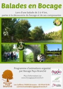 Balade en Bocage @ Noirterre | Bressuire | Nouvelle-Aquitaine | France
