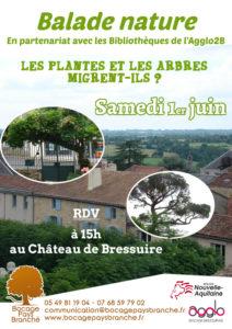 LES PLANTES ET LES ARBRES MIGRENT-ILS ? @ Château de Bressuire